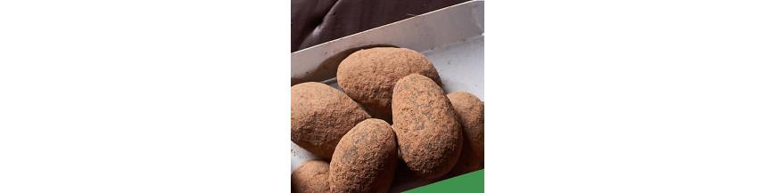 Fèves Cacao Plus